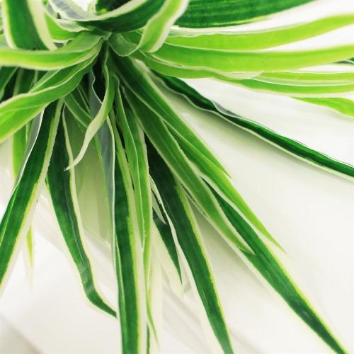 Хлорофитум куст искусственный зелено-белый 25 см - Фото 3