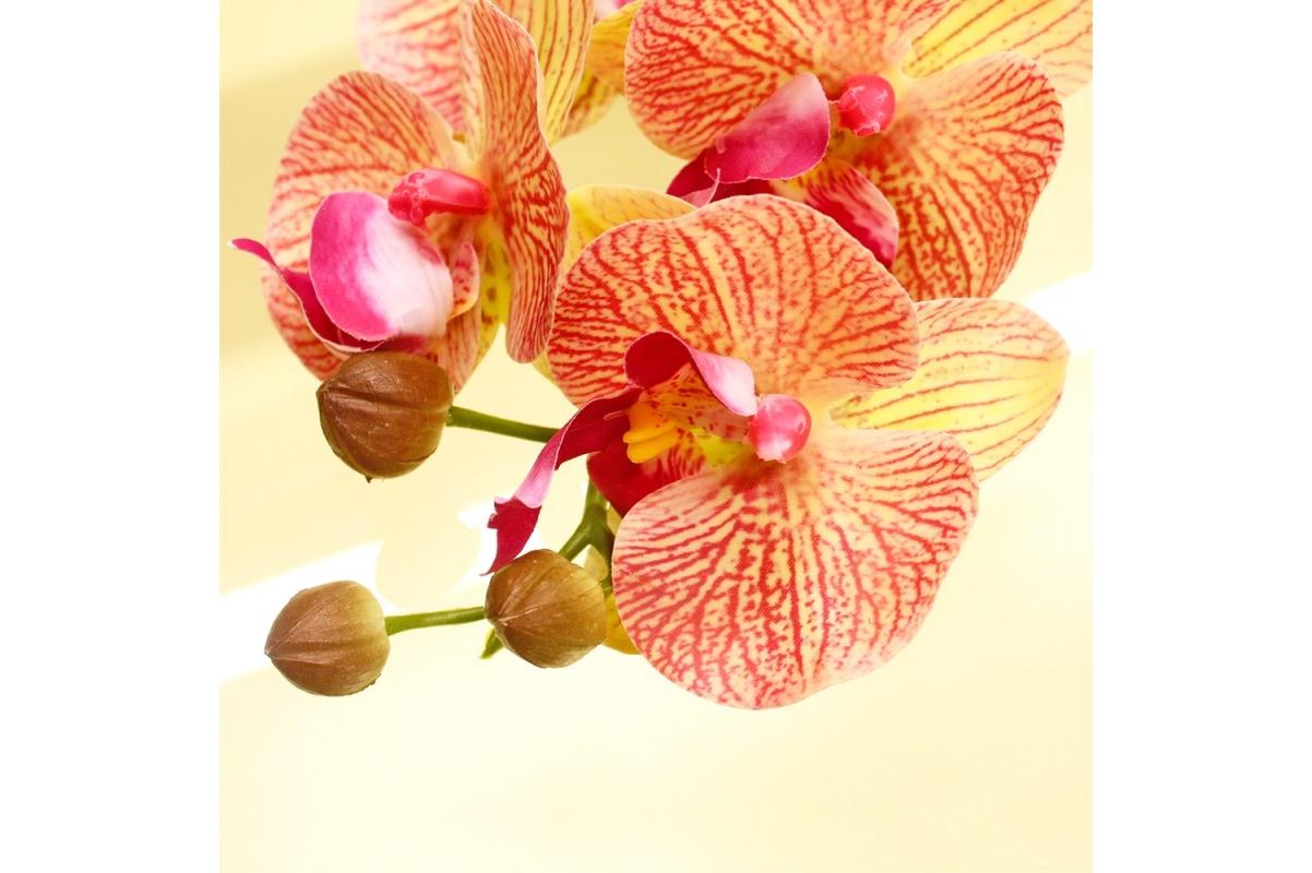 Орхидея Фаленопсис искусственная зелено-розовая 85 см (real touch) - Фото 3