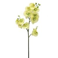 Орхидея Фаленопсис искусственная зеленая 69 см (real touch)