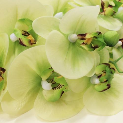 Орхидея Фаленопсис искусственная зеленая 65 см (real touch) - Фото 3