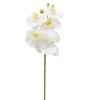 Орхидея Фаленопсис искусственная белая 65 см (real touch)