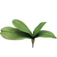 Лист Орхидеи Фаленопсис с корнями искусственный 30 см