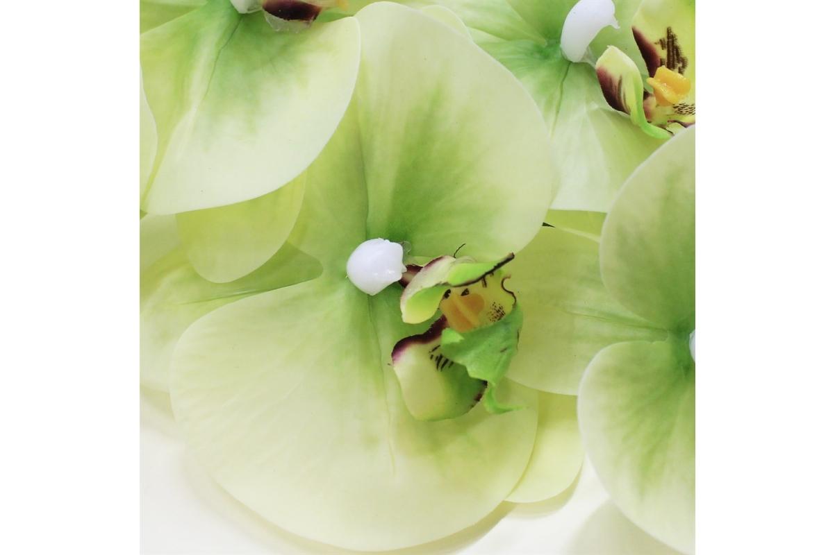 Орхидея Фаленопсис искусственная зеленая 90 см (real touch) - Фото 3
