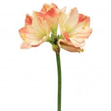 Амариллис 3 цветка и 1 бутон искусственный розово-белый 75 см (real touch)