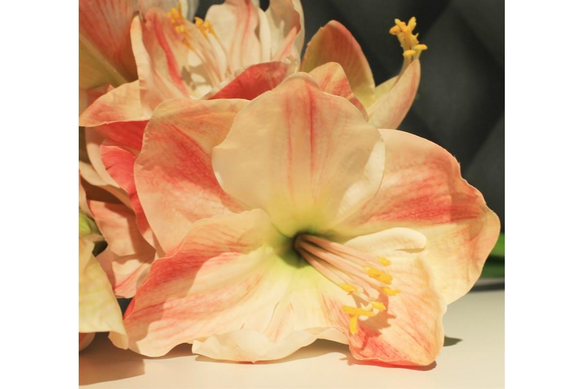 Амариллис 3 цветка и 1 бутон искусственный розово-белый 75 см (real touch) - Фото 3