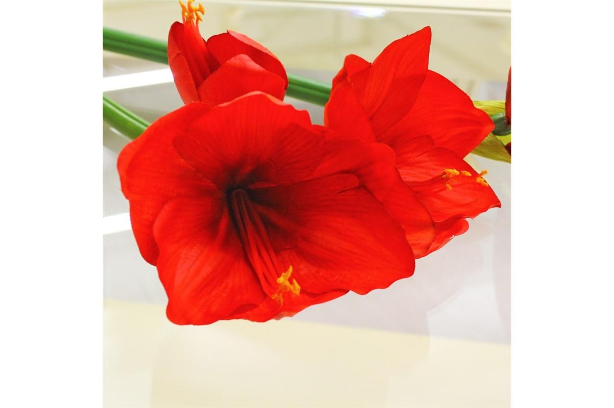 Амариллис 2 цветка и 1 бутон искусственный красный 70 см (real touch) - Фото 3
