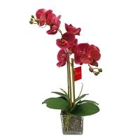 Композиция Орхидея фаленопсис 2 ветки искусственная красная в стеклянном кубе 50 см