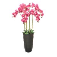 Композиция Орхидея Фаленопсис 7 веток искусственная бургундия в высоком кашпо 150 см