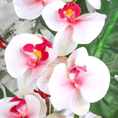 Композиция Орхидея Фаленопсис с Сореллой и листьями монстеры искусственная в стеклянной вазе с водой 90 см - Фото 3