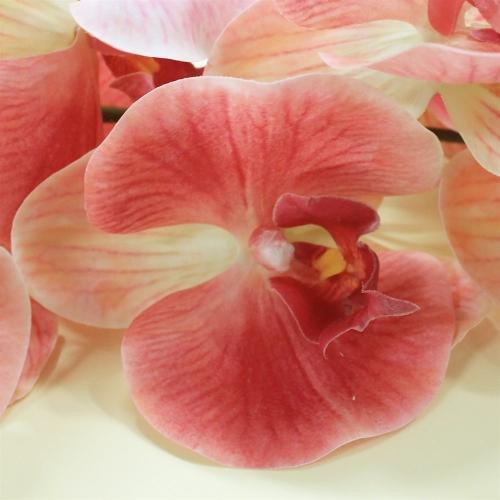 Орхидея Фаленопсис искусственная светло-розовая 115 см (real touch) - Фото 3