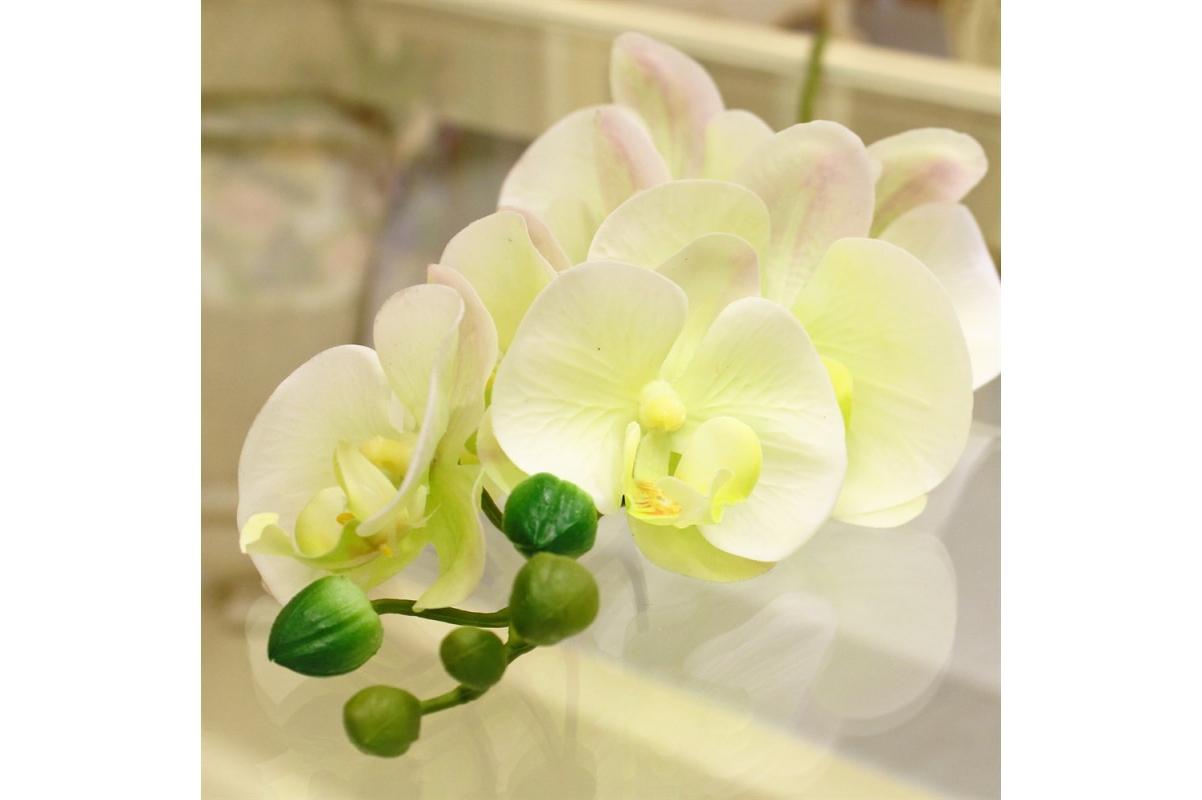 Орхидея Фаленопсис искусственная бело-зеленая с розовым 100 см (real touch) - Фото 3