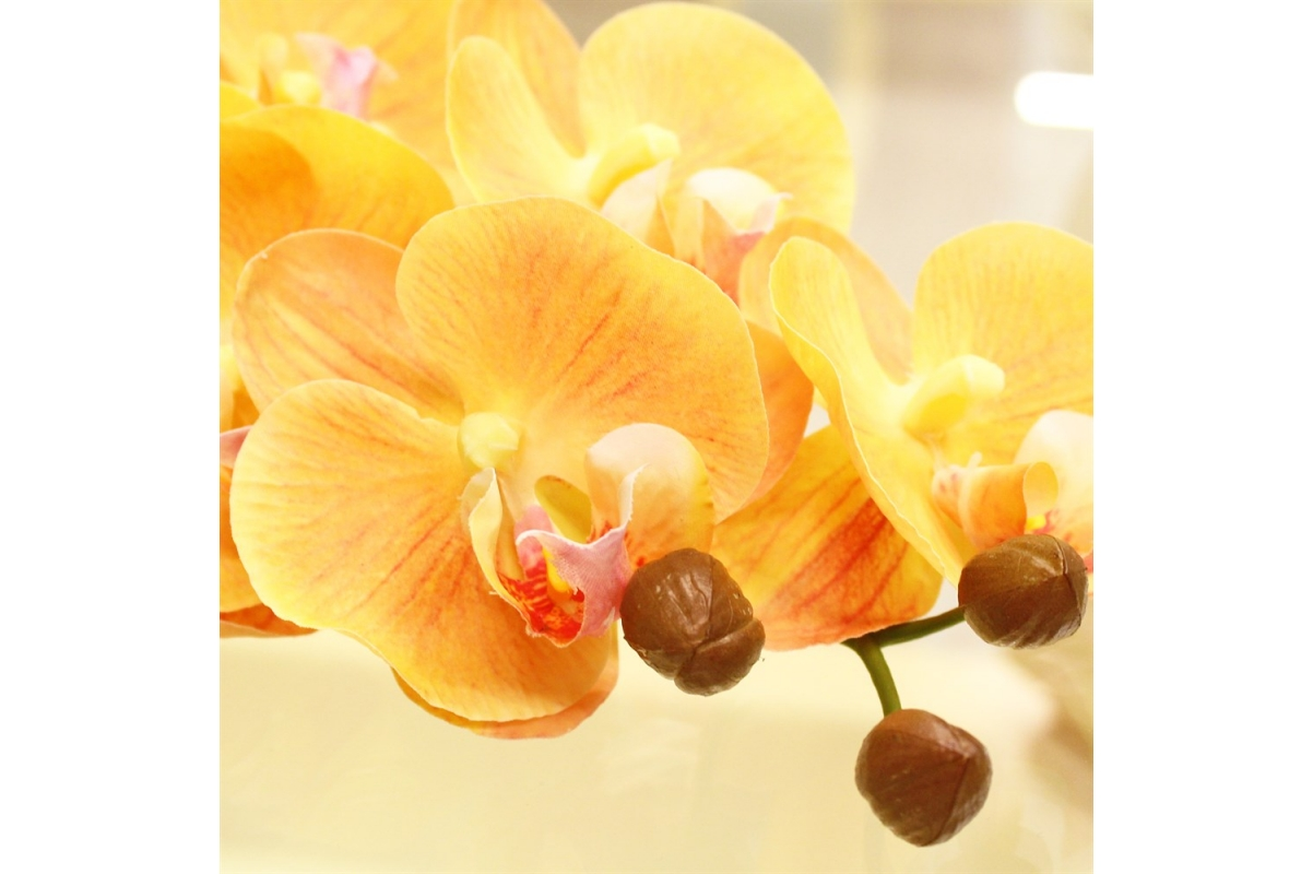 Орхидея Фаленопсис искусственная желтая 100 см (real touch) - Фото 3