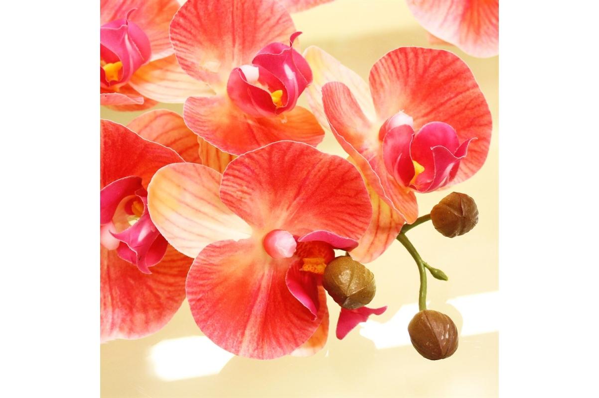Орхидея Фаленопсис искусственная персиковая 100 см (real touch) - Фото 3