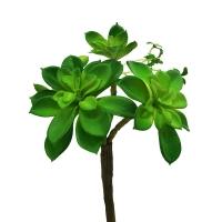 Суккулент Каменная Роза искусственный зеленый 25 см
