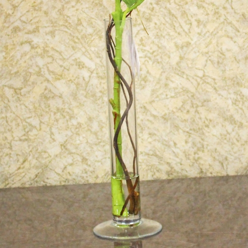 Композиция Гортензия искусственная зеленая в вазе цилиндр с водой 57 см - Фото 4