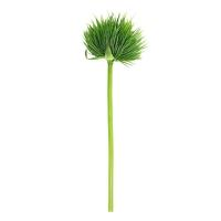 Протея искусственная зеленая 60 см