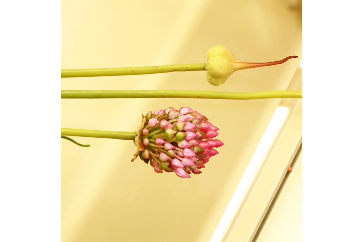 Лук цветущий искусственный 88 см - Фото 3