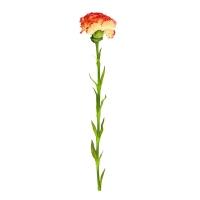 Гвоздика искусственная желто-красная 55 см