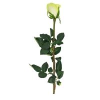 Роза искусственная зелено-белая 65 см