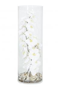Композиция в стеклянной вазе orchid white shells turbo sermaticus d25 h75 см