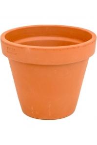 Кашпо terra cotta flowerpot d23 h19 см