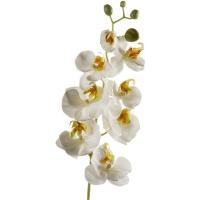 Орхидея фаленопсис ветвь белая с золотистым искусственная h68 см