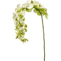 Орхидея фаленопсис изогнутая ветвь зелёная искусственная h110 см