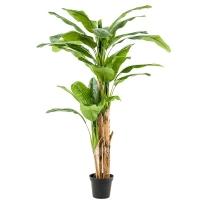 Банановая пальма искусственная h210 см