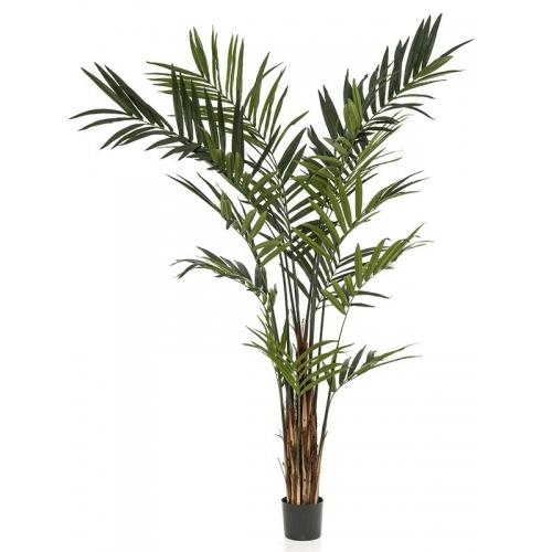 Пальма кентия (ховея) де люкс искусственная w55 h240 см