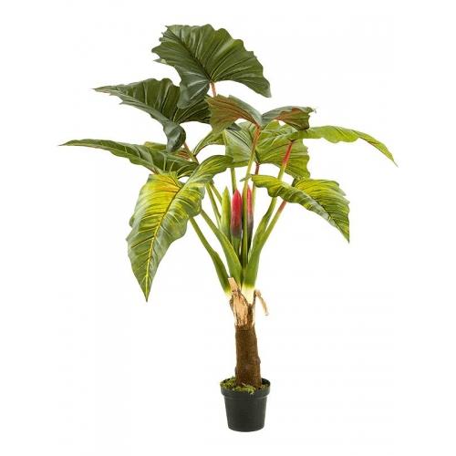 Колоказия дерево искусственное h160 см