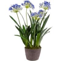 Агапантус синий искусственный h75 см