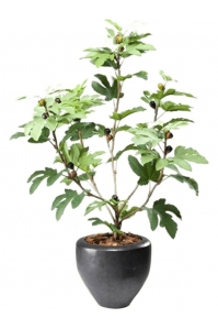 Инжир или фиговое дерево в пластиковом горшке искусственное h110 d13 см