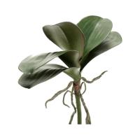 Листья орхидеи фаленопсис с корнями искусственные h30 см