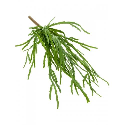 Ветка рипсалиса зелёная искусственная h35 см