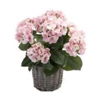 Гортензия розовая в плетёной корзине искусственная d20 см