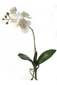 Орхидея фаленопсис белая с листьями искусственная h45 см