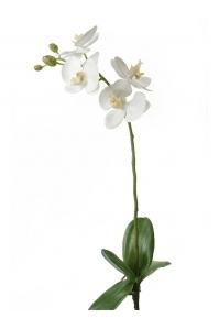 Орхидея фаленопсис белая с листьями искусственная h60 см