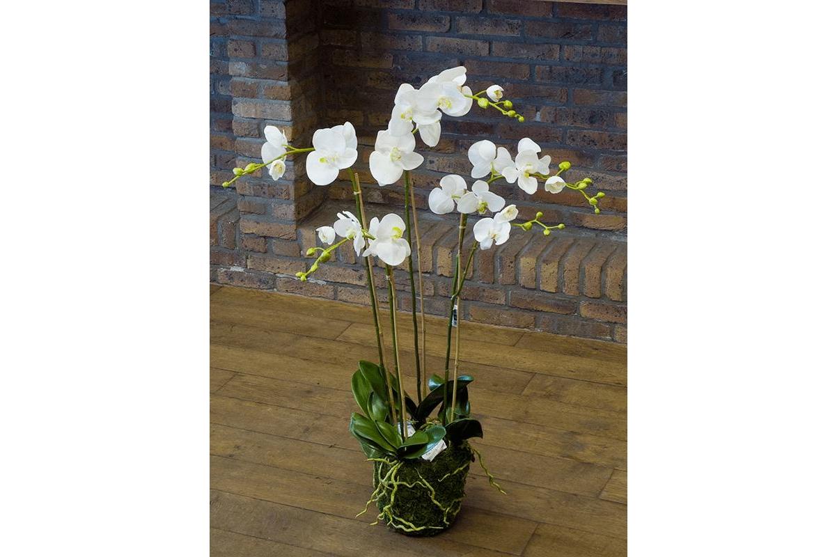 Орхидея фаленопсис белая с землёй и мхом искусственная h90 см