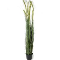 Трава лисохвост искусственная h150 d15 см
