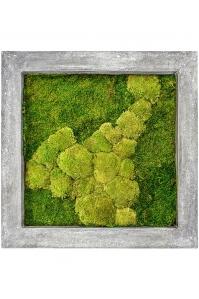 Картина из стабилизированного мха raw grey 50% ball- and 50% flat moss l70 w70 h5 см