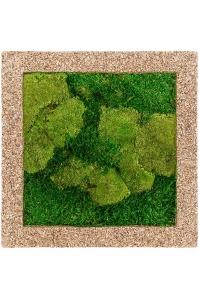 Картина из стабилизированного мха naturescast 50% ball- and 50% flat moss l50 w50 h5 см