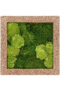 Картина из стабилизированного мха naturescast 30% ball- and 70% flat moss l50 w50 h5 см