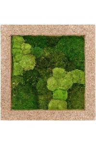Картина из стабилизированного мха naturescast 30% ball- and 70% flat moss l70 w70 h5 см