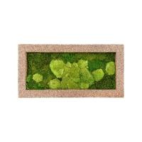 Картина из стабилизированного мха naturescast 50% ball- and 50% flat moss l100 w50 h5 см
