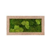Картина из стабилизированного мха naturescast 30% ball- and 70% flat moss l100 w50 h5 см