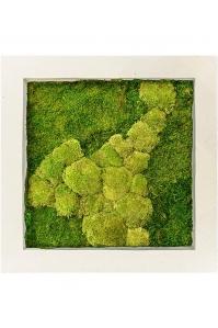Картина из стабилизированного мха natural 50% ball- and 50% flat moss l70 w70 h5 см