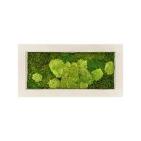 Картина из стабилизированного мха natural 50% ball- and 50% flat moss l100 w50 h5 см