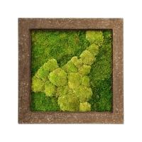 Картина из стабилизированного мха rock 50% ball- and 50% flat moss l70 w70 h5 см
