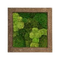 Картина из стабилизированного мха rock 30% ball- and 70% flat moss l70 w70 h5 см