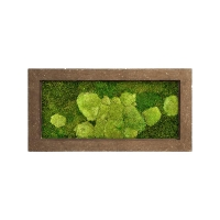 Картина из стабилизированного мха rock 50% ball- and 50% flat moss l100 w50 h5 см
